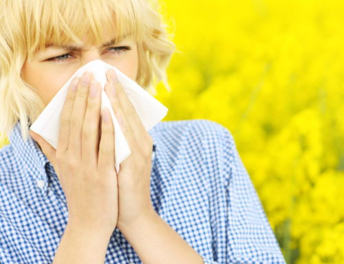 Newly-Found Immune Defence Could Pave Way to Treat Allergies